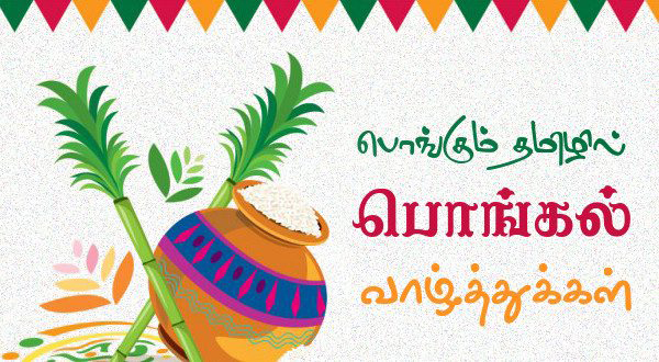 tamil pongal wishes best beautiful greetings for family wallpaper free mobile backgrounds