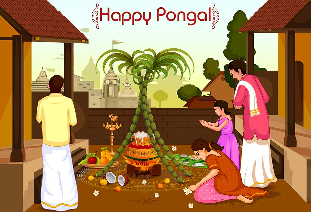 thai pongal 4k hd greetings wishes kaanum pongal wallpaper download