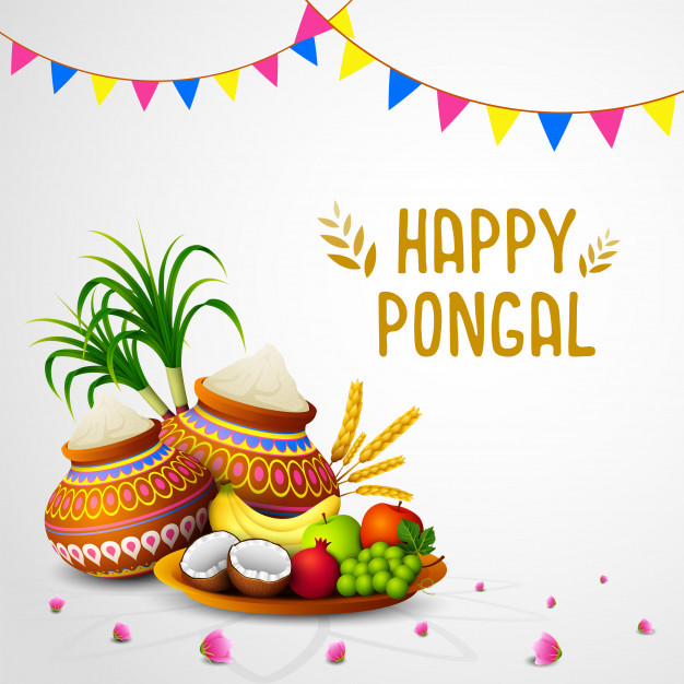 wish you happy pongal hd new best greeting cards wishes download