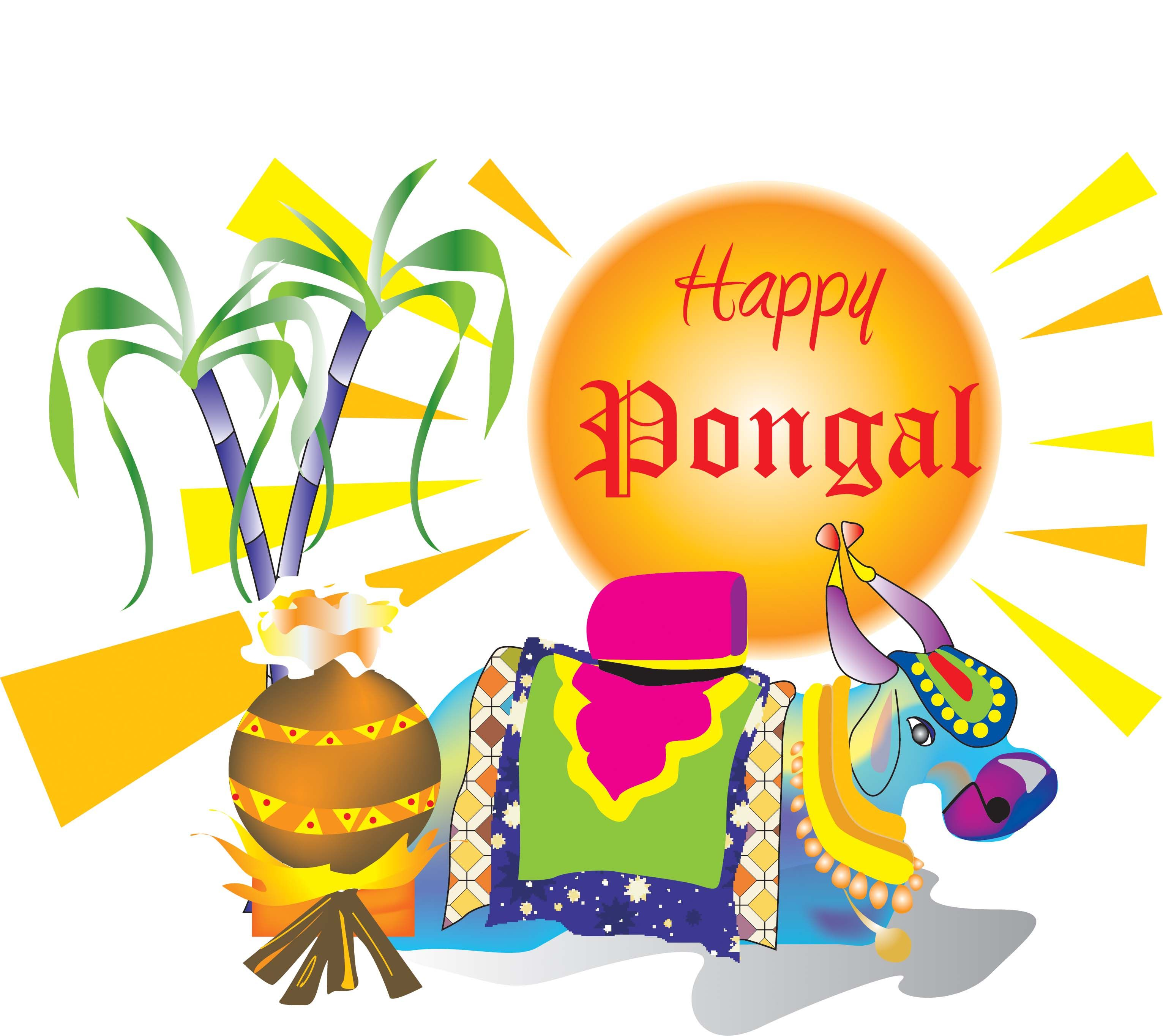 wish you happy pongal traditional harvest festival wallpaper photos images