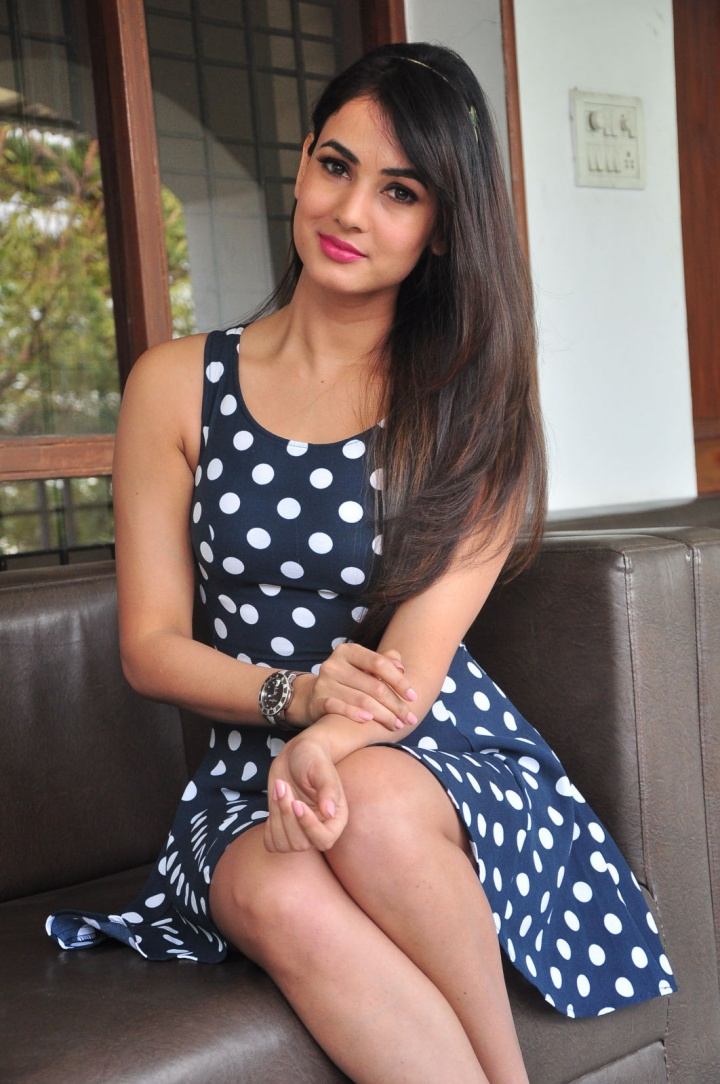 free high definition dazzling sonal chauhan pictures download