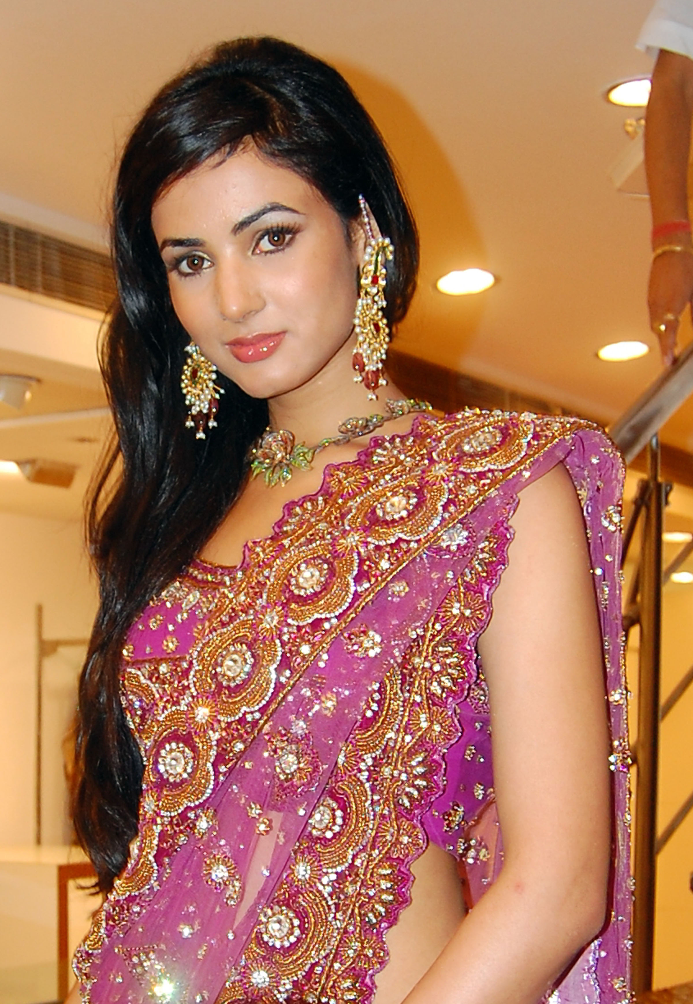 sonal chauhan awesome saree hd free pictures