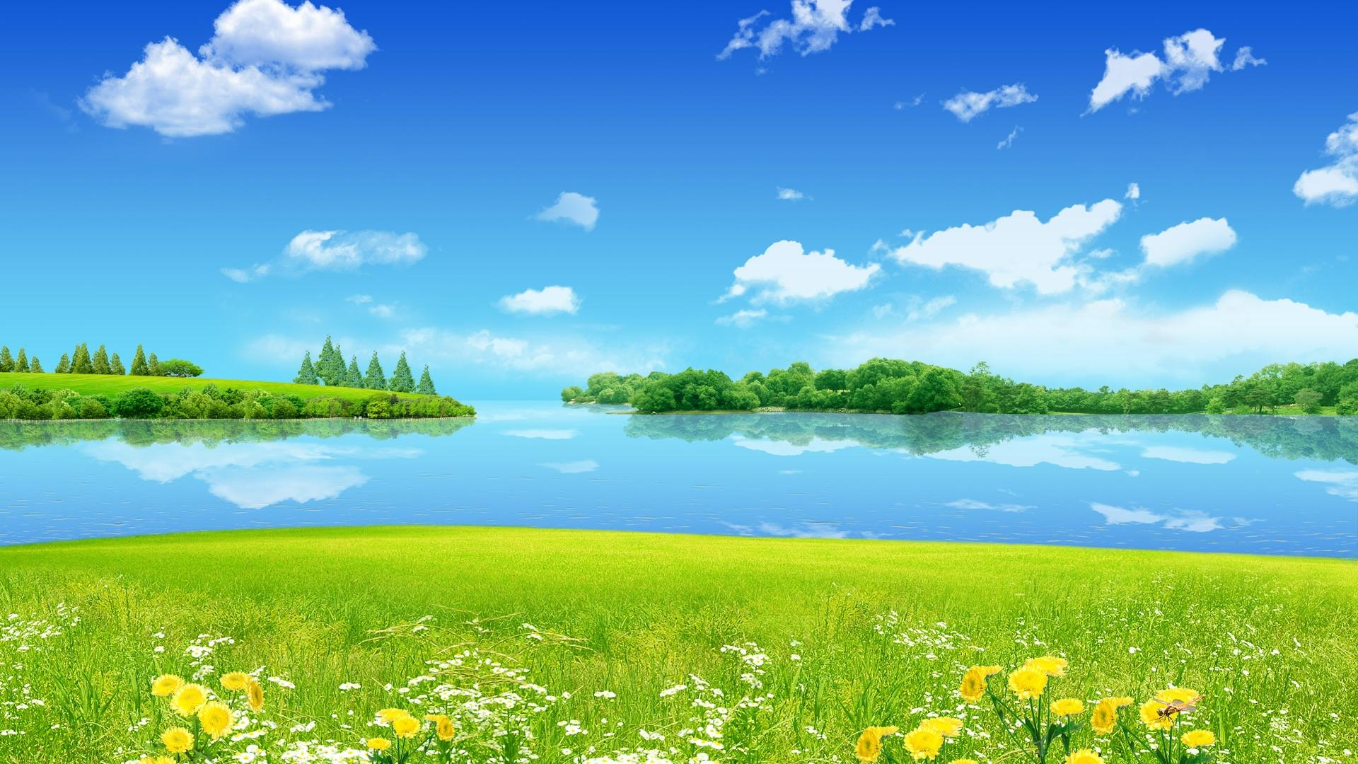 Blue Sea Sourrending Yellow Flower And Green Grass Nice Wallpapers Hd Free Summer Season