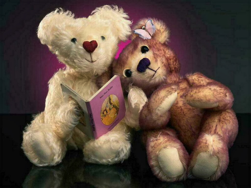 lovely teddy bear reading story books hd wallpaper