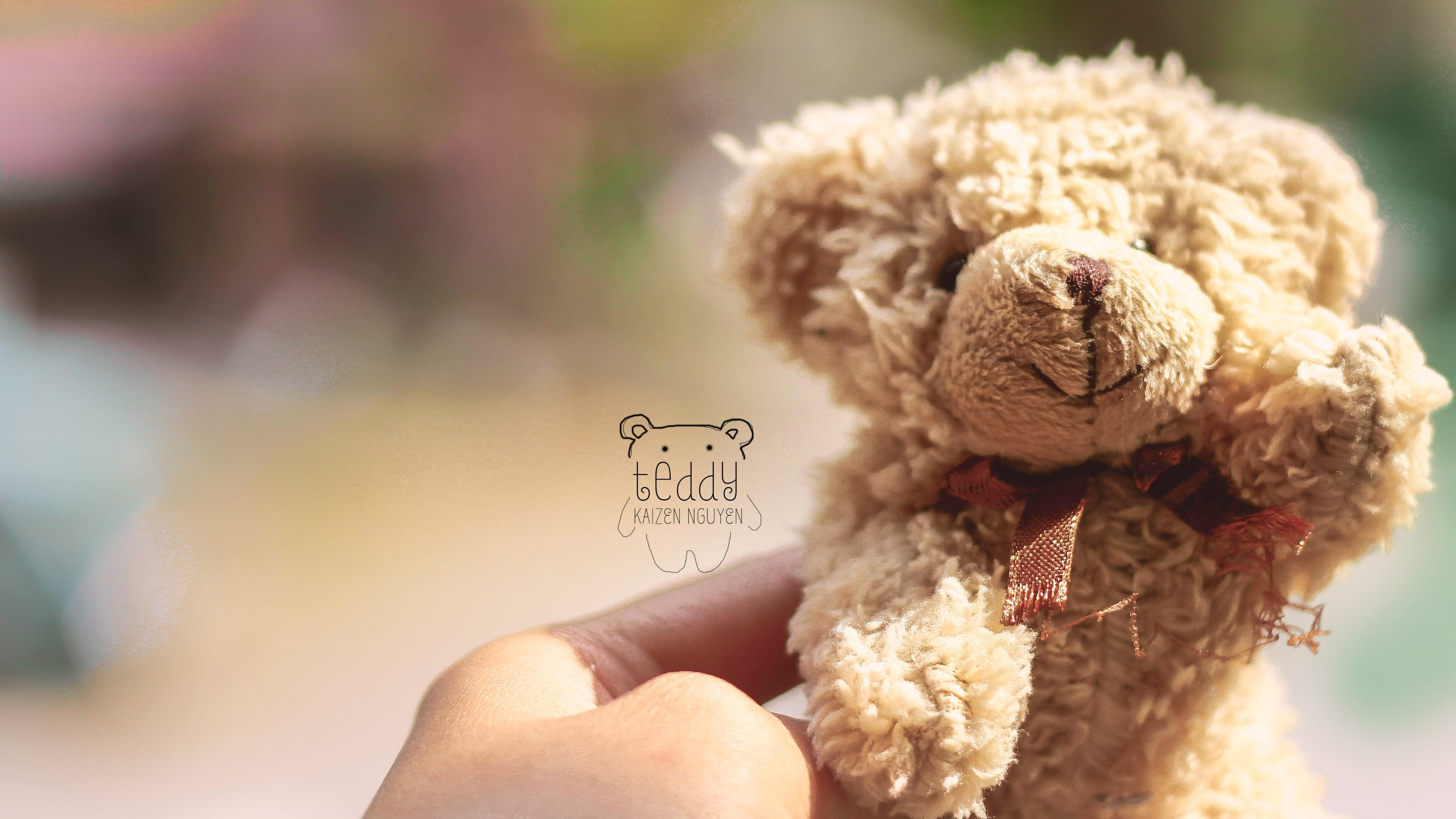 teddy bear uhd desktop wallpapers