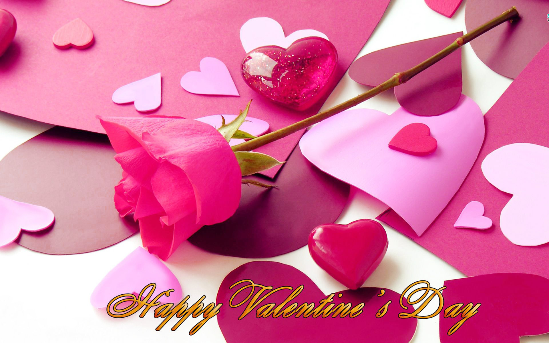 cute romantic valentine day roses with heart gift for girl friend hd photo