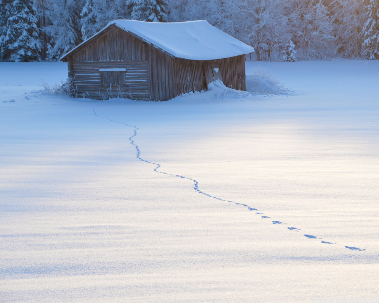 Winter Desktop Background Img Free Download