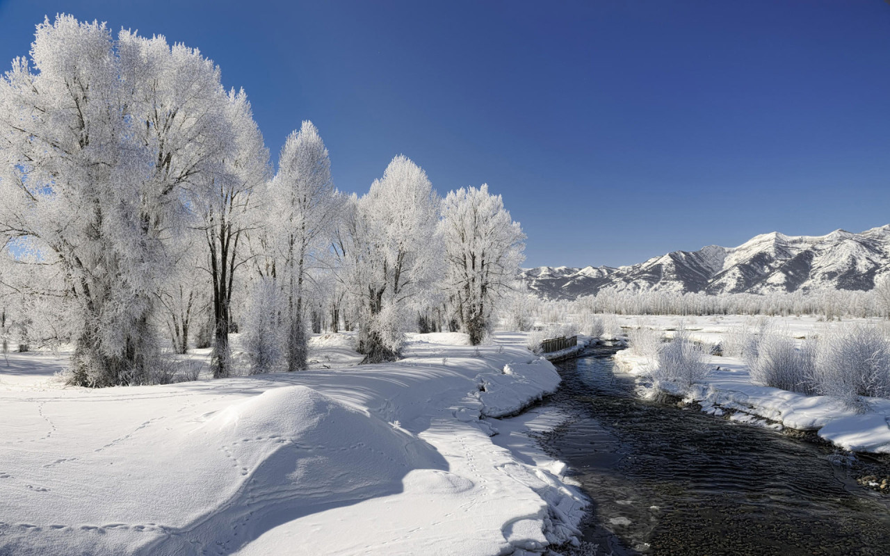 Winter Free Desktop Hd Wallpapers