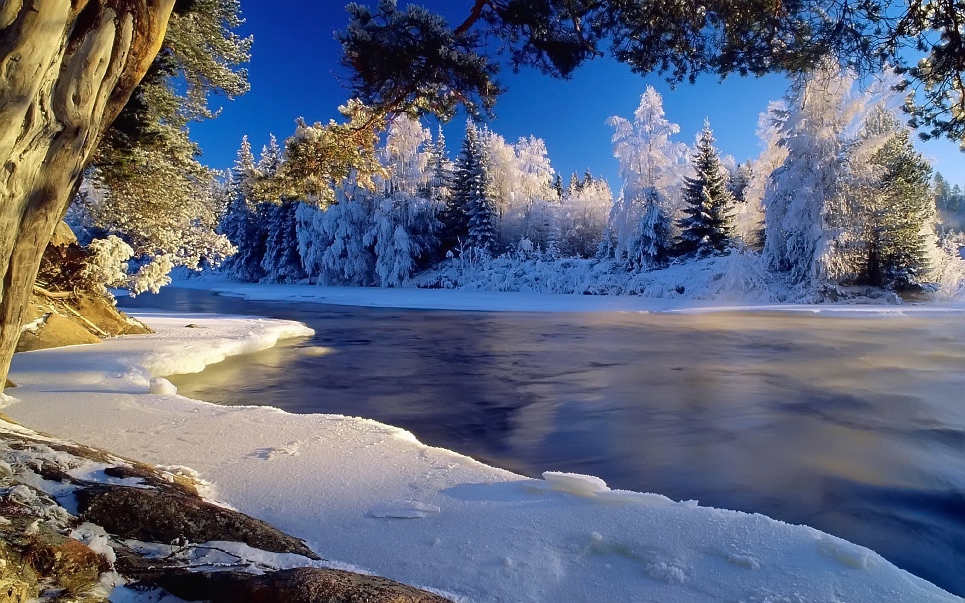 winter gives beautiful picture hd views photos and images