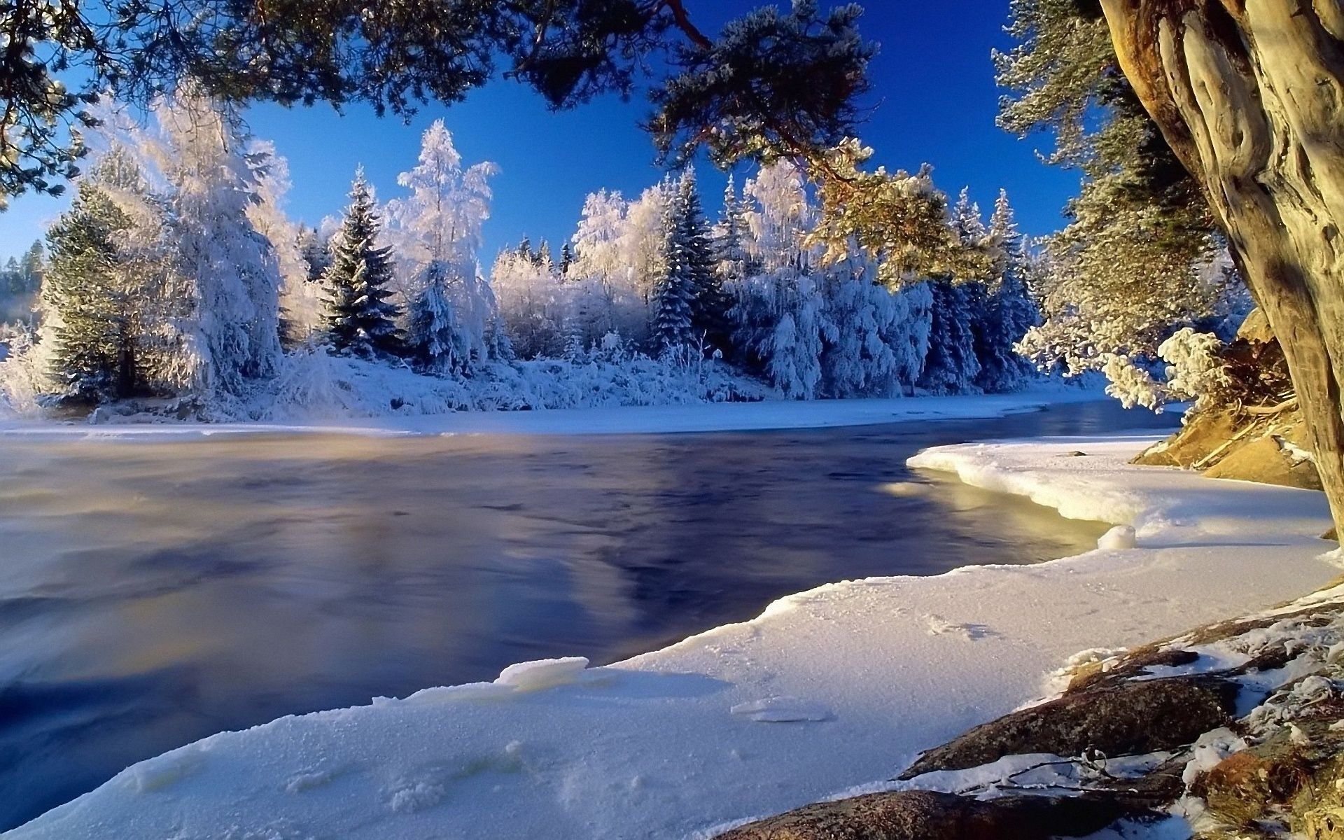 Winter Landscape Wallpaper Hd Views Picture Download
