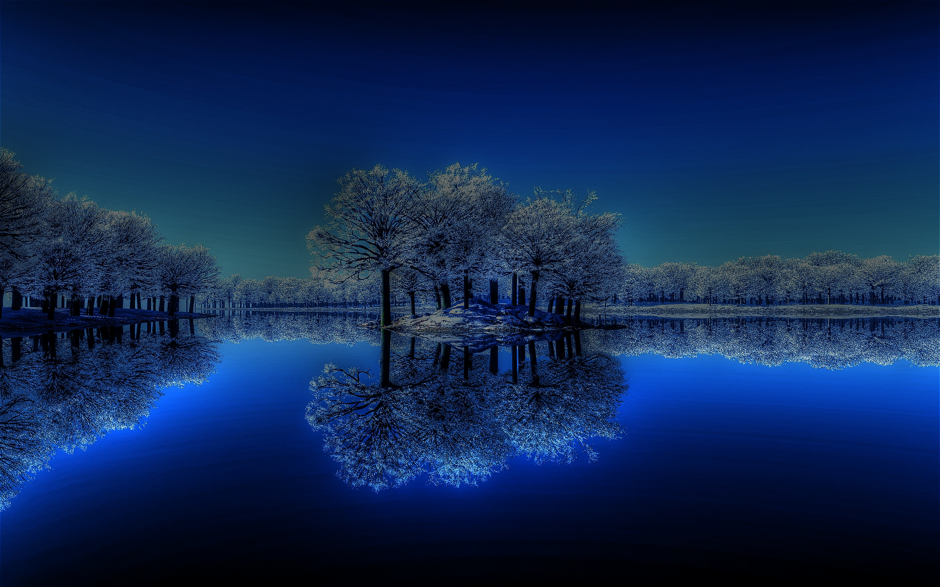Winter Night Lake Calm Trees Hd Wallpapers